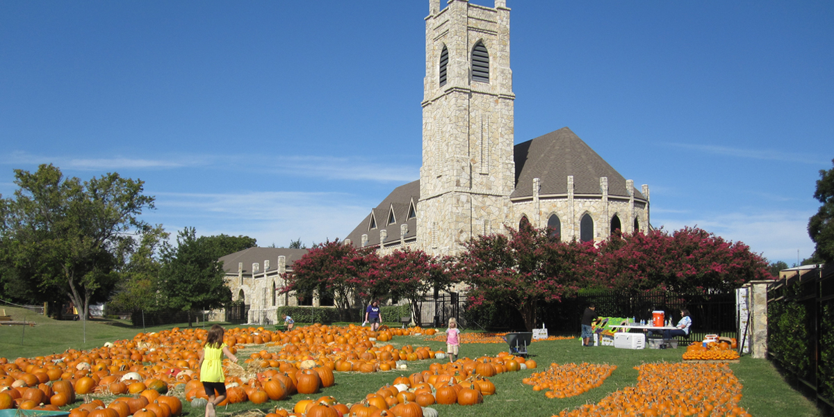 Pumpkin Patch | St  James Episcopal Church